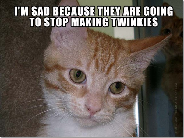TWINKIE CAT SAD